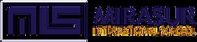 Logo Mirasur.png