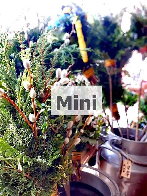 Minipalmbuschen