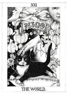 NICO-BW1.jpg