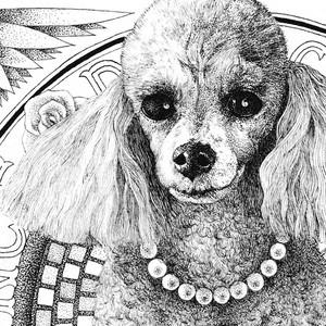 Commissioned Artwork (Pet Portrait), 2020