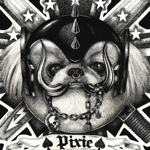 Pixie2.jpg