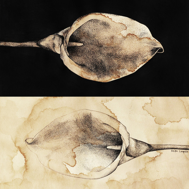 """Ying Yang (Alum Lily)"", 2017"