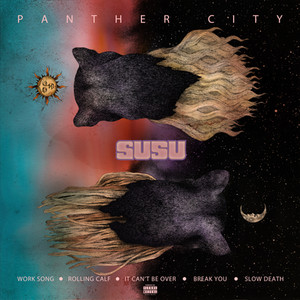 SUSU PANTHER CITY-back.jpg