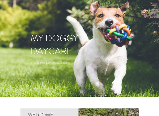 My Doggy Daycare - Case Study