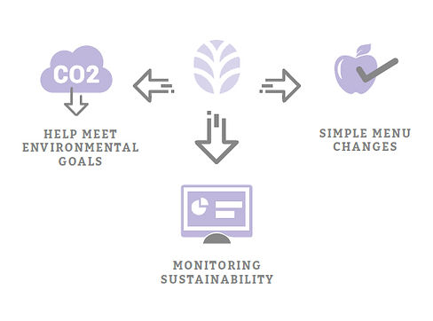Bespoke sustainability solutions infogra