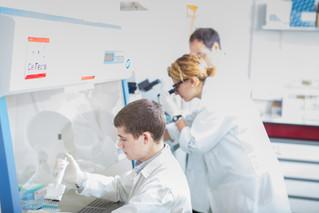 CRISPR à l'honneur grâce à Nicolas Rebergue