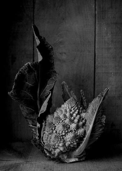 nature_morte_dans_la_caisse_de_vin-%C2%A9_Alain_Bujak-1257_copie_edited.jpg