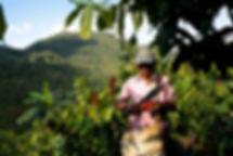 Guatemala-Alta_Verapaz©_Alain_Bujak-6888