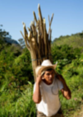 Guatemala-Alta_Verapaz©_Alain_Bujak-1001
