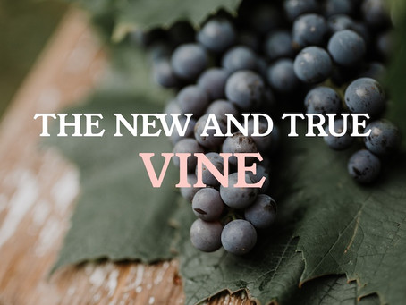 The New and True Vine