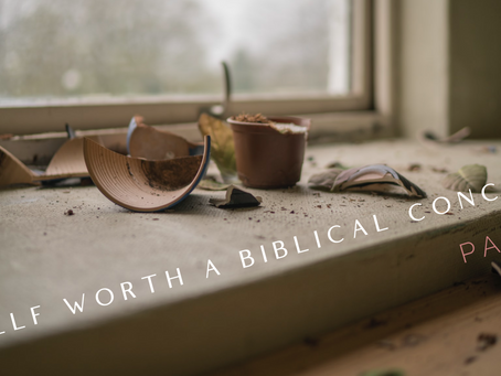 Is Self Worth a Biblical Concept? (Part 2)
