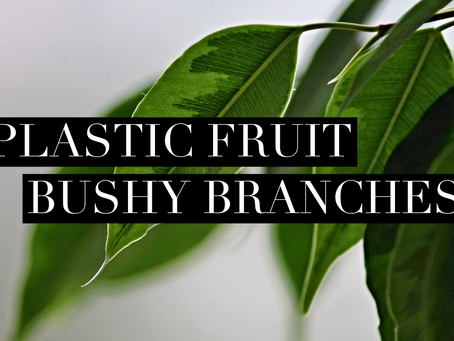 Plastic Fruit and Bushy Branches