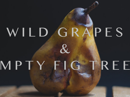 Wild Grapes and Empty Fig Trees