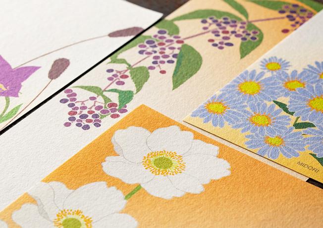fleurs d 'automne 3.jpg