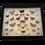 Thumbnail: Papillon encadré