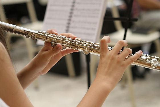 Flute Lessons for adults and children