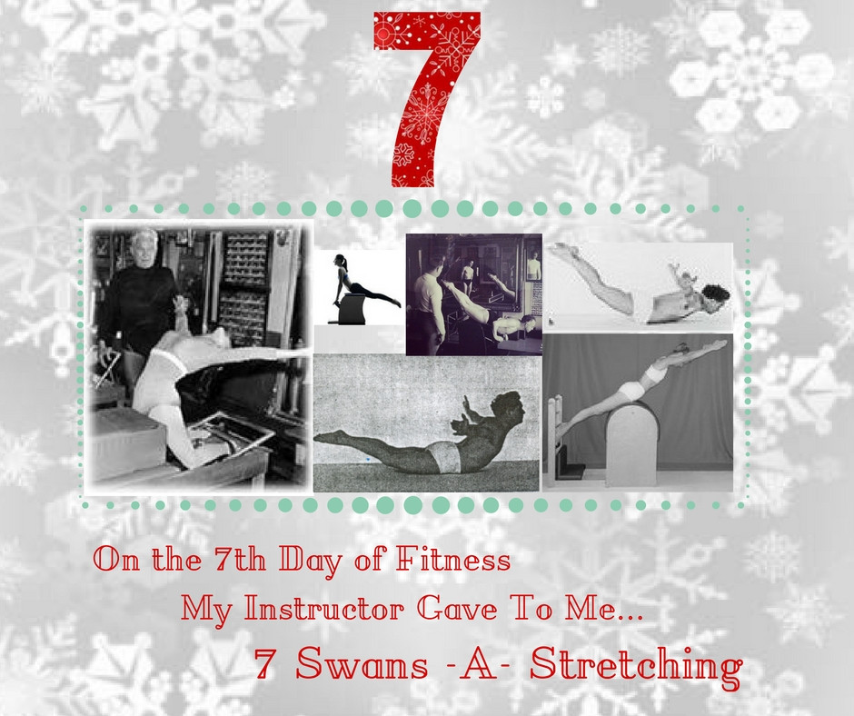 7 Swans a Stretching