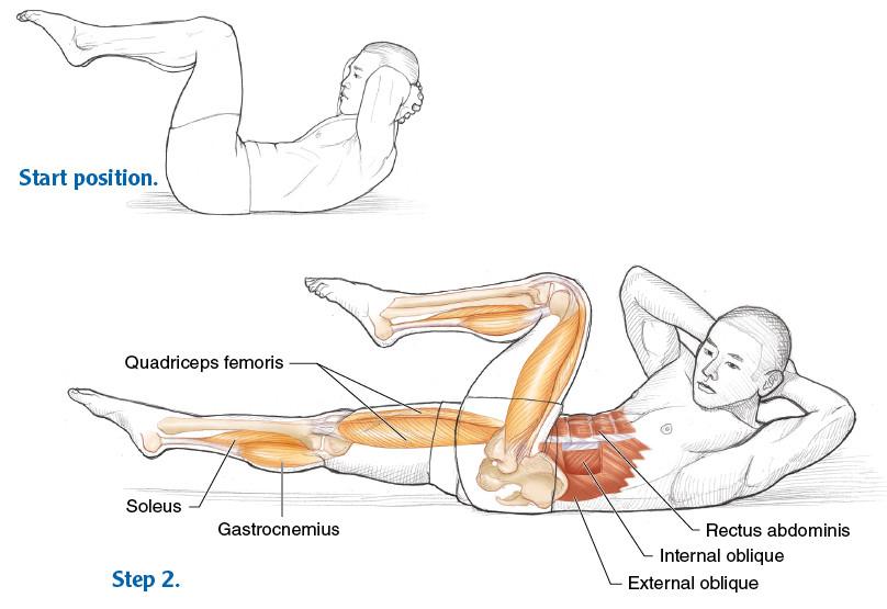 Criss Cross Muscles
