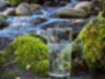 twe-home-water-800_edited.jpg