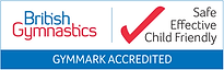 2013 Gymmark logo.png