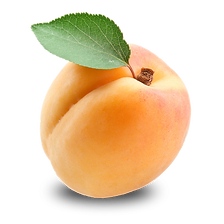 apricot_0.png