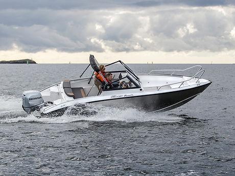 silver-sharkbr y.jpg