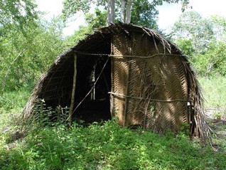 Indigenous food systems for climate resilience in Mijikenda community, Coastal Kenya