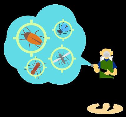 pest-coontrol-2021_03.png
