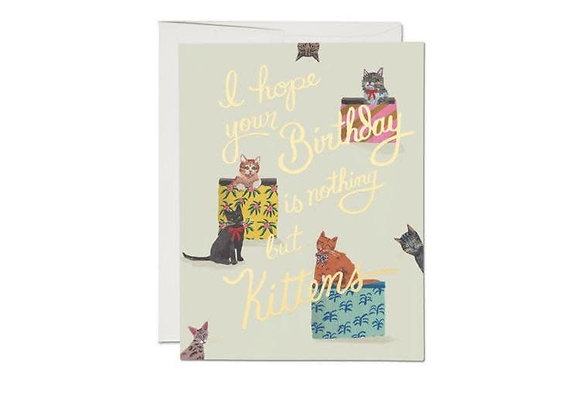 Nothing But Kittens Foil Birthday Card
