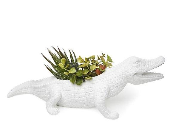 Chomp Gator Planter