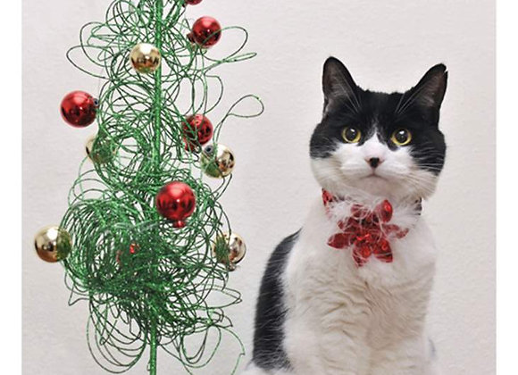 Cat With Tree Holiday Card