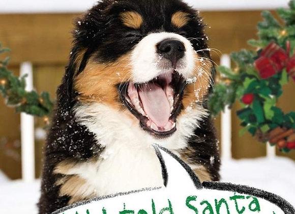 Christmas Is Cancel Christmas Card