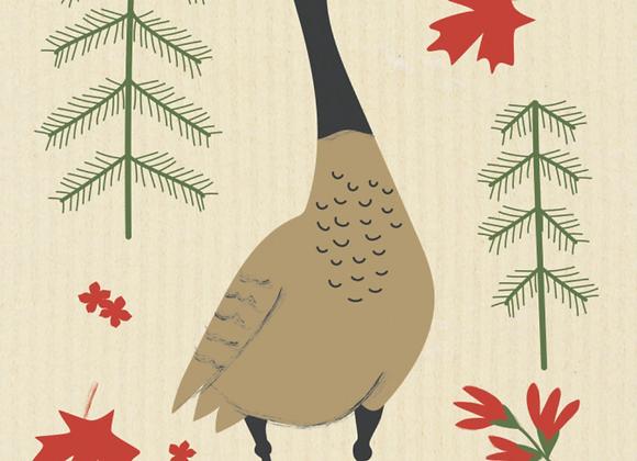 Canada Goose Ecologie Swedish Sponge Cloth