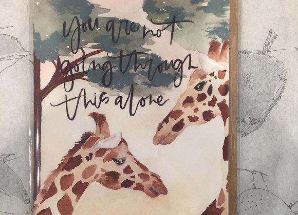 Giraffes Sympathy Card