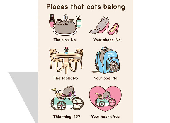 Places That Cats Belong Card