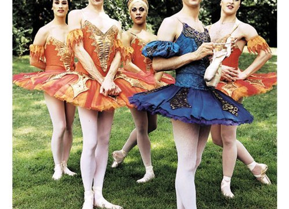Men Ballet Birthday Card