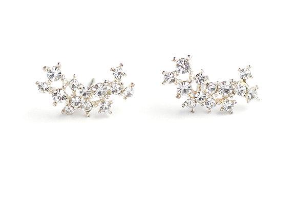Stardust Climber Earrings