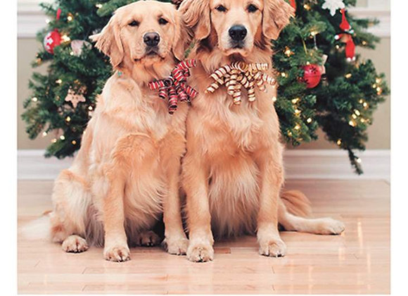 Two Dogs Xmas Tree Holiday Card
