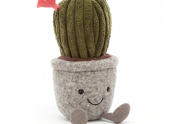 Silly Succulent Cactus Plush Toy