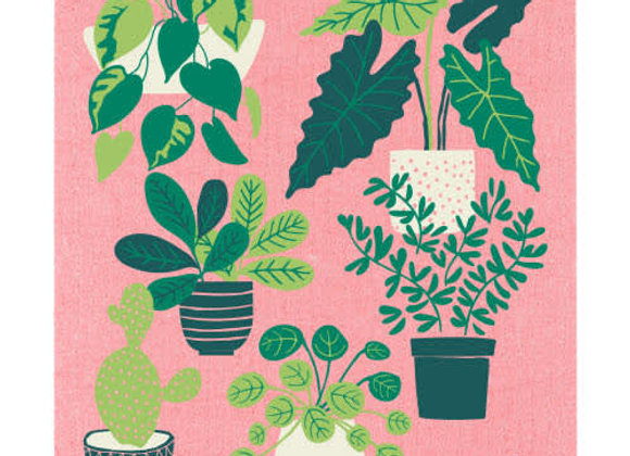 Let It Grow Ecologie Swedish Sponge Cloth