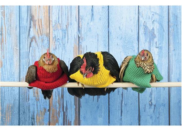 Chicken In Sweater Birthday Card