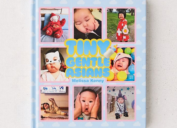 Tiny Gentle Asians by Melissa Kenny - Book