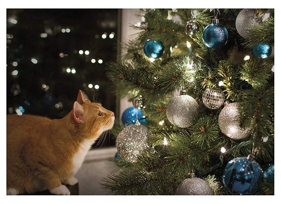 Cat Xmas Tree Christmas Card