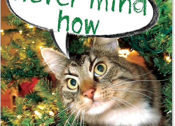 Never Mind How Christmas Card