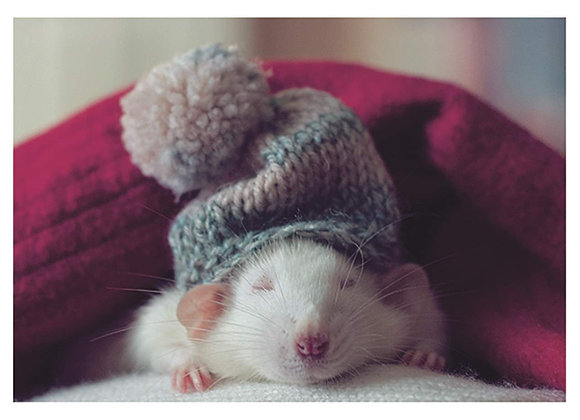 Mouse With Hat Holiday Card