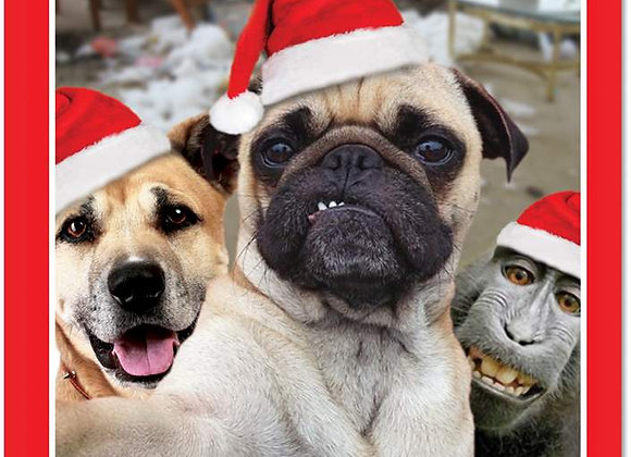 Dogs With Christmas Hat Christmas Card