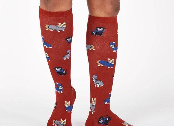 Knee High Funky Knee Sweater Weather Socks