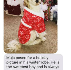 Mojo Holiday Robe