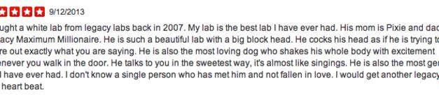 Love Our White Lab