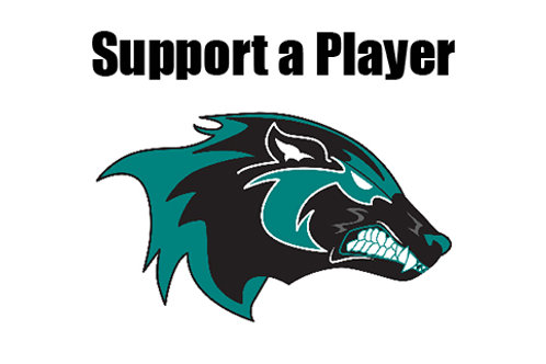 2020 Support-a-Player